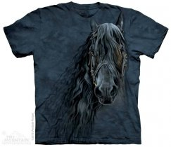 Forever Friesian - The Mountain