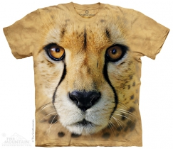 Big Face Cheetah - Gepard - The Mountain
