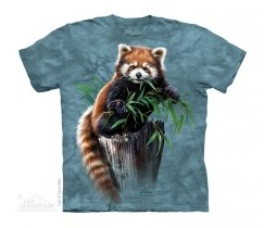 Bamboo Red Panda - The Mountain -Dziecięca