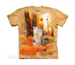 Fall Kitty - The Mountain Junior
