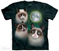 Three Grumpy Cat Moon - The Mountain