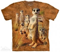 Meerkat Pack - The Mountain