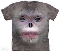Big Face Snub Nose Monkey  - The Mountain