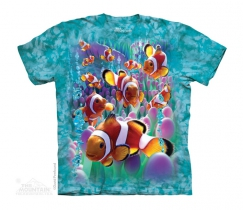 Clownfish - The Mountain - Junior