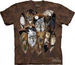 Animal Feathers - The Mountain