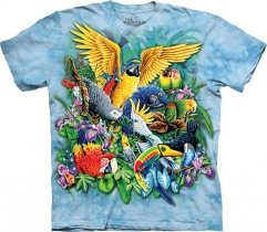 Birds of the Tropics - The Mountain