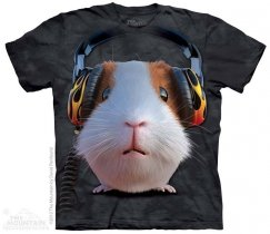 DJ Guinea Pig - The Mountain