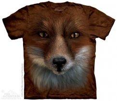 Big Face Fox - Lis - The Mountain