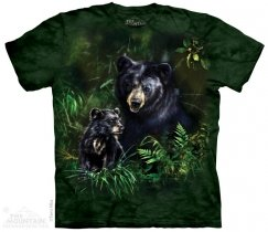 Black Bear and Cub - The Mountain