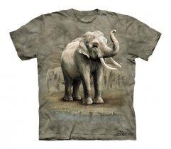 Asian Elephants - Junior - The Mountain
