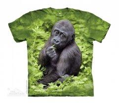 Kojo Western Lowland Gorilla - The Mountain - Dziecięca