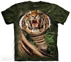 Cogra - Tygrysokobra - The Mountain