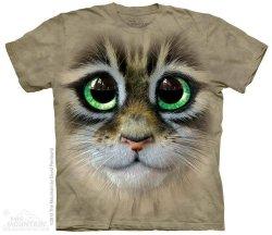 Big Eyes Kitten Face - The Mountain