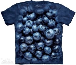 Blueberries - The Mountain
