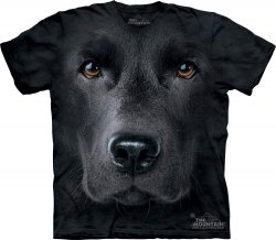 Black Lab Face - The Mountain