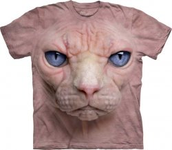 Hairless Pussycat Face - The Mountain