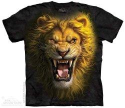 Asian Lion - The Mountain