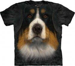 Bernese Mountain Dog Face - Berneński Pies Pasterski