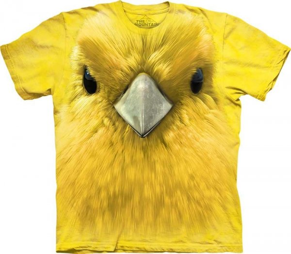 Yellow Warbler Face Gajówka - The Mountain