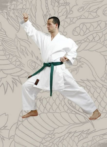 Karatega Chikara od 110 cm