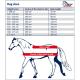 Zestaw derka polarowa + kantar z uwiązem - Harrys Horse
