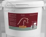 Glinka chłodząca KAOGLIN 2kg - OVER HORSE