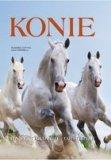 Konie. Rasy, tradycje, obyczaje. Susanna Cottica i Luca Paparelli