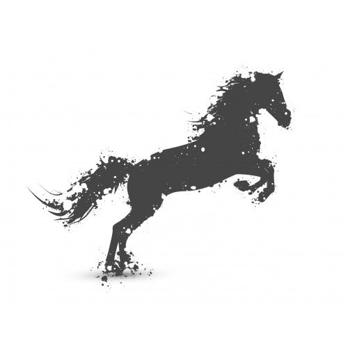 Bluza Black Horse - FORRIDER