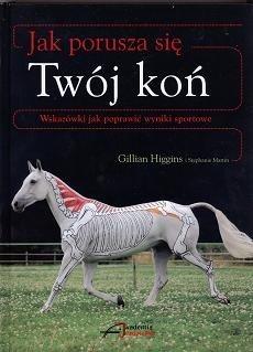 Jak porusza się Twój koń - Gillian Higgins