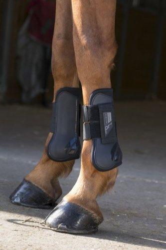 Ochraniacze Norton Pro PONY - przody