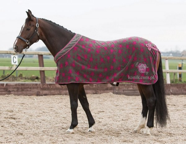 Derka polarowa STARS SU15 Dark Gull Gray - Harrys Horse