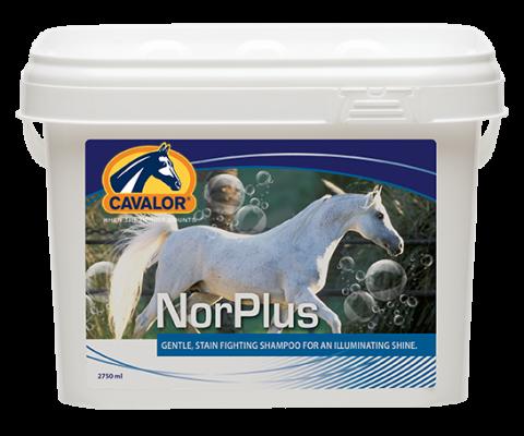 Szampon NorPlus 2,75L - Cavalor