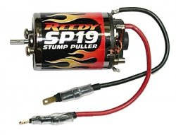 Silnik Reedy SP19 (#290) - Team Associated