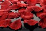 Płatki róż w woreczku 500 szt bordowe