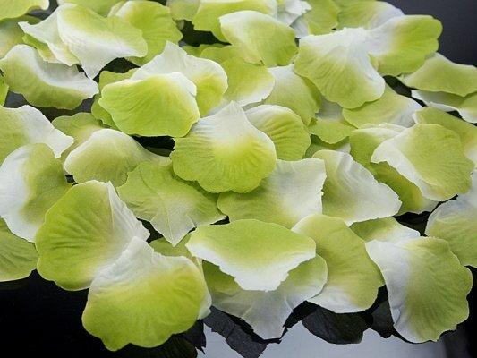 Płatki róż w woreczku j.zielone 100szt