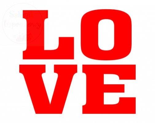 "Naklejki na buty ""LOVE""  2szt NB5"