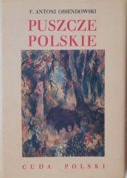 F. Antoni Ossendowski • Puszcze polskie