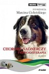 Choroby nadnerczy i steroidoterapia u psów