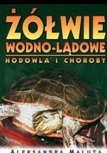 Żółwie wodno-lądowe Hodowla i choroby