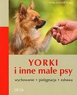 Yorki i inne małe psy wychowanie pielęgnacja zabawa