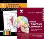 Atlas anatomii człowieka Nettera (polskie mianownictwo anatomiczne) + Anatomia Nettera do kolorowania