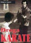 Droga karate