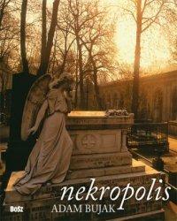 Nekropolis Adam Bujak, Jacek Kolbuszewski