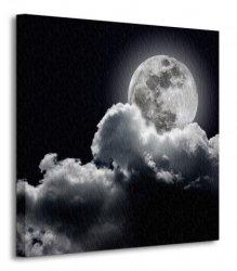 Pełnia księzyca - Obraz na płótnie