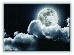Pełnia księżyca - Obraz na płótnie