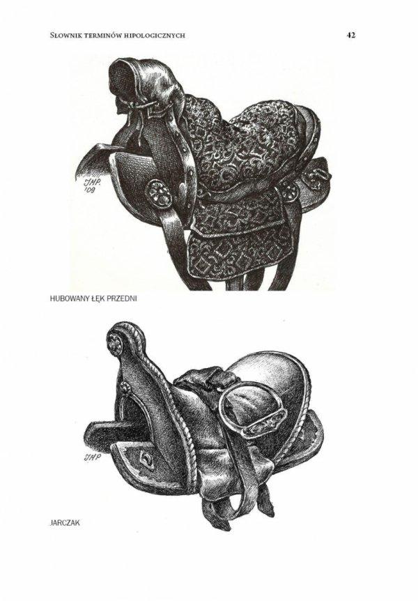 Słownik terminów hipologicznych używanych w Polsce XVI-XVII w.