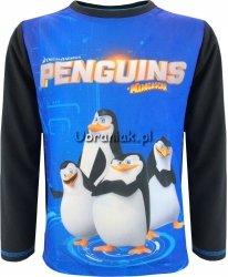Bluzka Pingwiny z Madagaskaru Penguis czarna