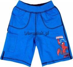 Spodenki Spiderman niebieskie