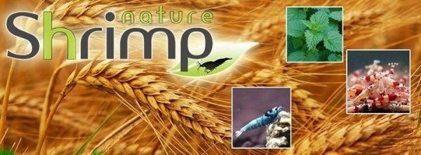 SHRIMP NATURE ŻÓŁTY 30g pokarm roślinno-proteinowy krewetki
