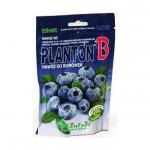 PLANTON B nawóz do borówek kwaśnolubnych 200 g